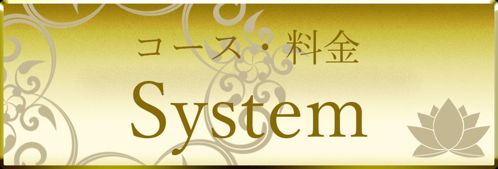 topbottan-system